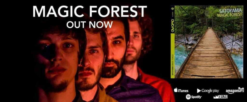 Locandina Magic Forest