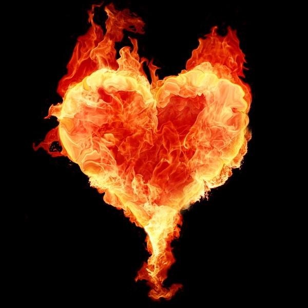 Copertina dell'album Love